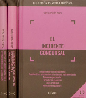 foto-libro-el-incidente-con